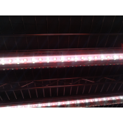 EZYGRO T8 Integrated Red-White Light Tube